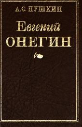 Евгеній Онѣгинъ: романъ бъ стихахъ