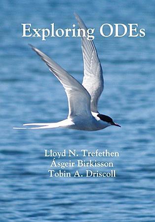 Exploring ODEs PDF