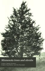 Minnesota Trees and Shrubs