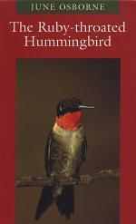 The Ruby-throated Hummingbird