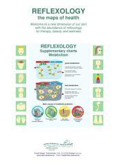 2 - Metabolism and Reflexology: Reflexology supplementary charts