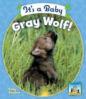 It's a Baby Gray Wolf