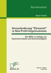 """Herausforderung """"Ehrenamt"""" in Non-Profit-Organisationen: Die NPOs im Gefüge von Gewinnwirtschaft und Gemeinnützigkeit"""