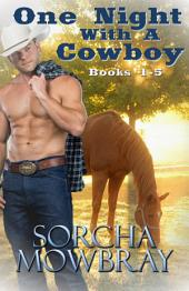 One Night With A Cowboy: Books 1-4