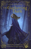 Download The Gathering Dark Book