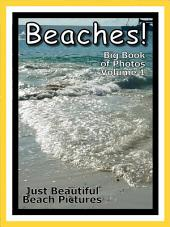 Just Beaches! vol. 1: Big Book of Ocean Beach Photographs & Pictures