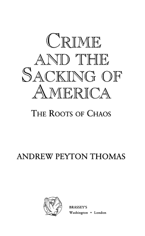 Crime and the Sacking of America PDF