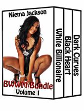 BWWM Bundle - Volume 1 (Taboo Interracial Romance BWWM)