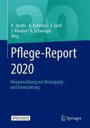 Pflege Report 2020 PDF