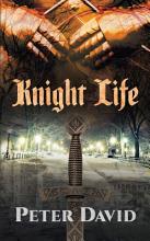 Knight Life PDF