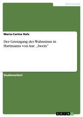 Der Grenzgang des Wahnsinns in Hartmanns von Aue ,,Iwein''