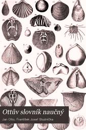 Ottův slovník naučný: Illustrovaná encyklopædie obecných vědomostí, Svazek 21