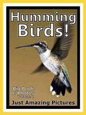 Just Humming Birds! vol. 1: Big Book of Humming Bird Photographs & Pictures