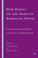 New Essays on the African American Novel PDF