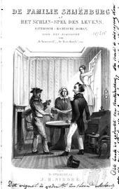 De familie Snijënburg, of Het schijn-spel des levens: satirisch-komische roman
