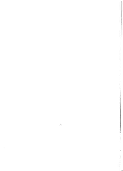 Bicentennial Times PDF