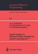 Expert Systems in Structural Safety Assessment