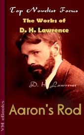 Aaron's Rod: Top Novelist Focus