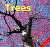 Trees: Little Kiss02
