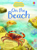 Beginners  on the Beach