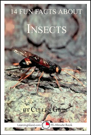 14 Fun Facts About Insects