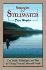 Strategies for Stillwater
