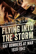 Flying Into the Storm PDF