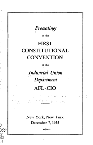 Proceedings  of The  Constitutional Convention PDF