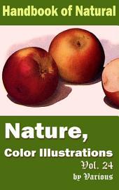 Nature, Color Illustrations Vol.24: Handbook of Nature
