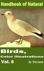 Birds, Color Illustrations Vol.6