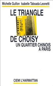 Le triangle de Choisy: Un quartier chinois à Paris