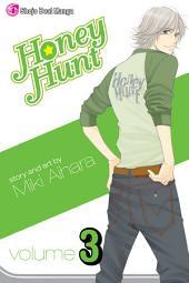 Honey Hunt: Volume 3