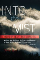 Into the Mist Book