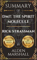 Summary of DMT  The Spirit Molecule By Rick Strassman PDF