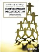 Comportamento organizzativo  Fondamenti psicologici per l azione manageriale