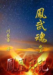 凤武魂之三:凤凰印记: 简体中文版
