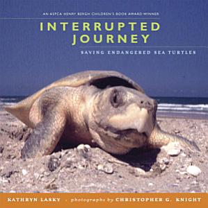 Interrupted Journey Book