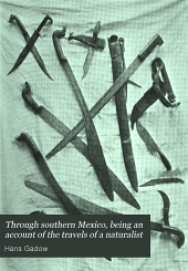 Through Southern Mexico: Being an Account of the Travels of a Naturalist