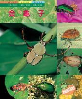 金龜子: 親親自然152