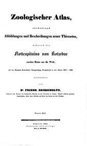 Zoologischer Atlas, enthaltend Abbildungen und Beschreibungen neuer Thierarten: während des Flottcapitains von Kotzebue zweiter Reise um die Welt, auf der Russisch-Kaiserlichen Kriegsschlupp Predpriaetie in den Jahren 1823 - 1826 beobachtet, Band 4