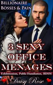Three Sexy Office Menages: Billionaire Bosses & Pain