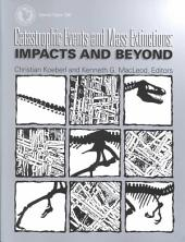 Catastrophic Events and Mass Extinctions: Impacts and Beyond