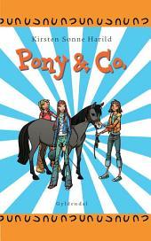 Pony & Co.1
