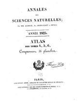 Annales des sciences naturelles: Volumes4à6