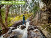 Shooting the Bush