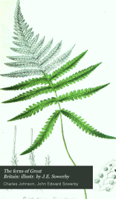 The ferns of Great Britain: illustr. by J.E. Sowerby: Volume 1