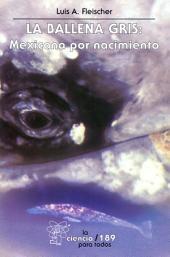 La ballena gris: Mexicana por nacimiento