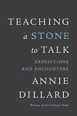 Teaching a Stone to Talk