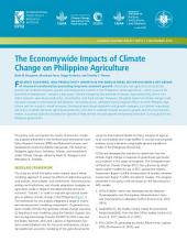 The economywide impacts of climate change on Philippine agriculture