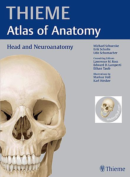 Head And Neuroanatomy Thieme Atlas Of Anatomy